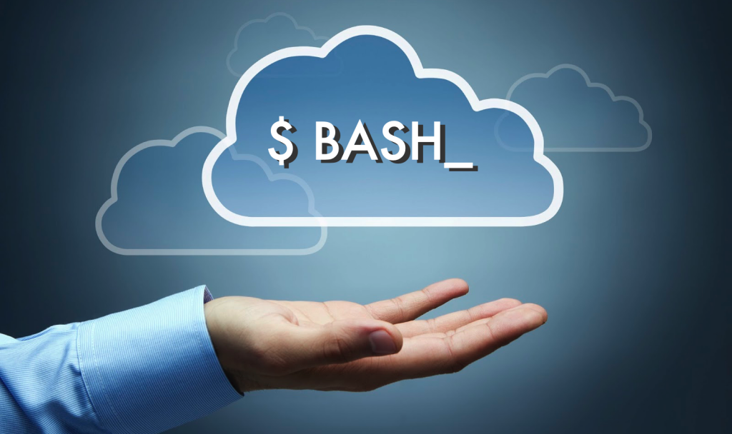 bash in the cloud on aws